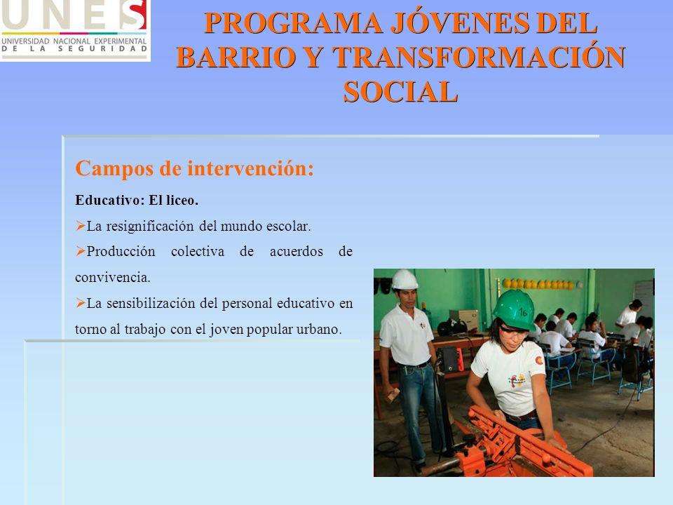 PROGRAMA JÓVENES DEL BARRIO Y TRANSFORMACIÓN SOCIAL Campos de intervención: Educativo: El liceo. La resignificación del mundo escolar. Producción cole