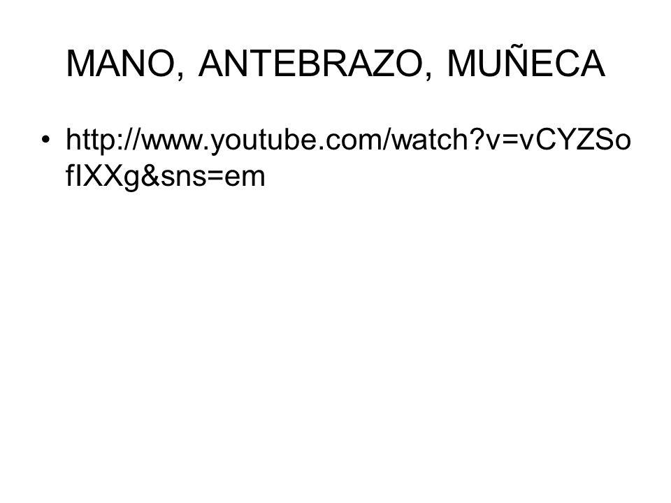 MANO, ANTEBRAZO, MUÑECA http://www.youtube.com/watch?v=vCYZSo fIXXg&sns=em