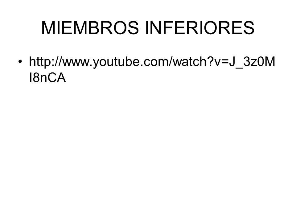 MIEMBROS INFERIORES http://www.youtube.com/watch?v=J_3z0M I8nCA