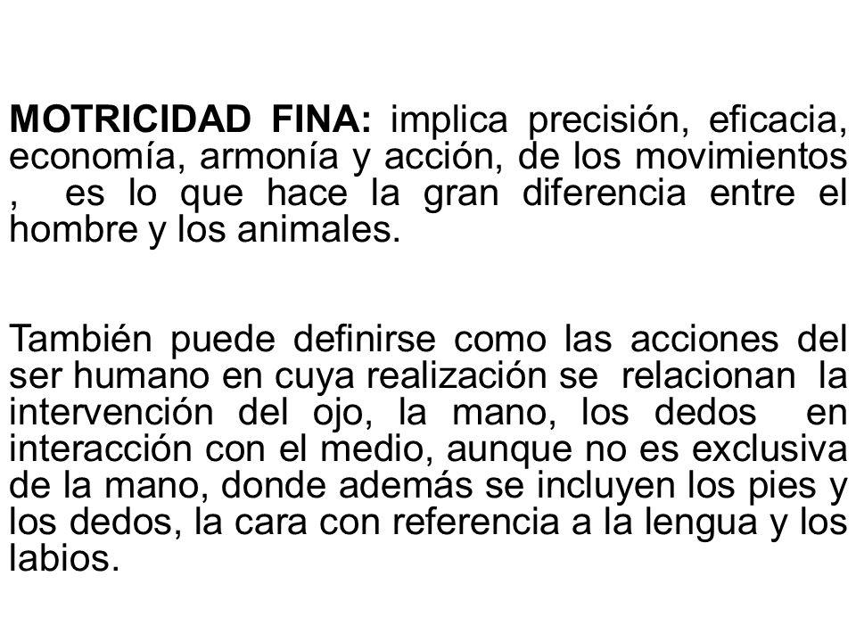 MOTRICIDAD FINA: implica precisión, eficacia, economía, armonía y acción, de los movimientos, es lo que hace la gran diferencia entre el hombre y los animales.