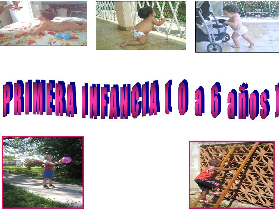 INFANCIA TEMPRANA (0 a 3 años) 1er año Sensorio-motriz (O a 1 año) 2do año de vida: Motricidad (1 a 2 años) 3er año de vida: Motricidad (2 a 3 años)