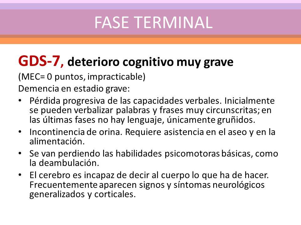 GDS-7, deterioro cognitivo muy grave (MEC= 0 puntos, impracticable) Demencia en estadio grave: Pérdida progresiva de las capacidades verbales. Inicial