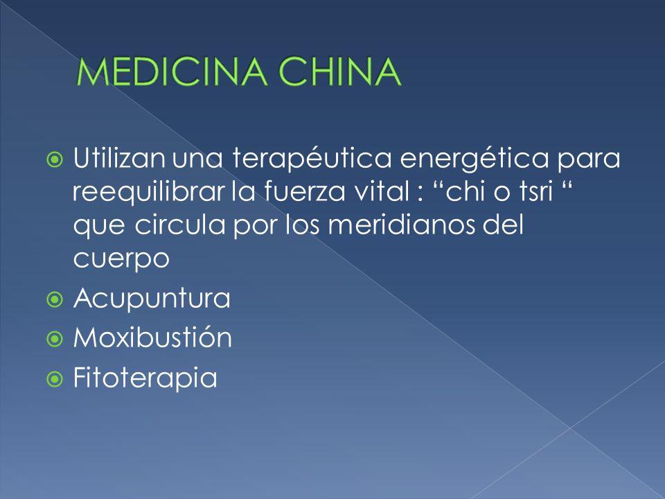 Utilizan una terapéutica energética para reequilibrar la fuerza vital : chi o tsri que circula por los meridianos del cuerpo Acupuntura Moxibustión Fi