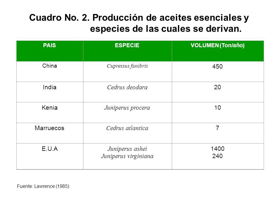 Cuadro No. 2. Producción de aceites esenciales y especies de las cuales se derivan. PAISESPECIEVOLUMEN (Ton/año) China Cupressus funibris 450 India Ce