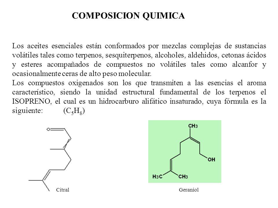 COMPOSICION QUIMICA Los aceites esenciales están conformados por mezclas complejas de sustancias volátiles tales como terpenos, sesquiterpenos, alcoho