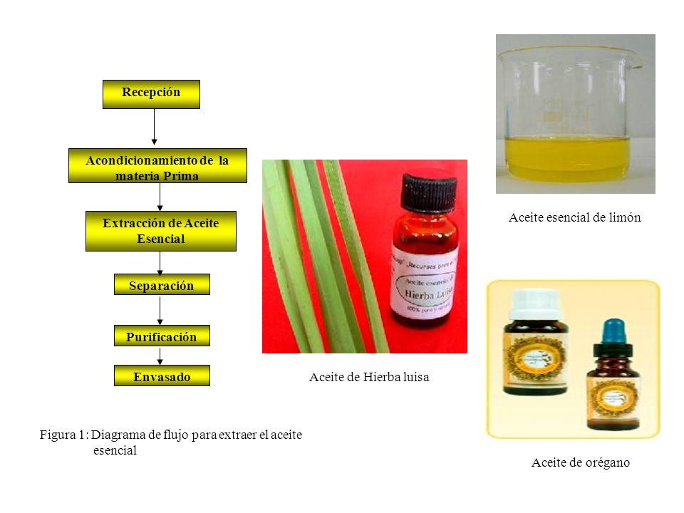 Recepción Acondicionamiento de la materia Prima Extracción de Aceite Esencial Separación Purificación Envasado Figura 1: Diagrama de flujo para extraer el aceite esencial Aceite esencial de limón Aceite de orégano Aceite de Hierba luisa