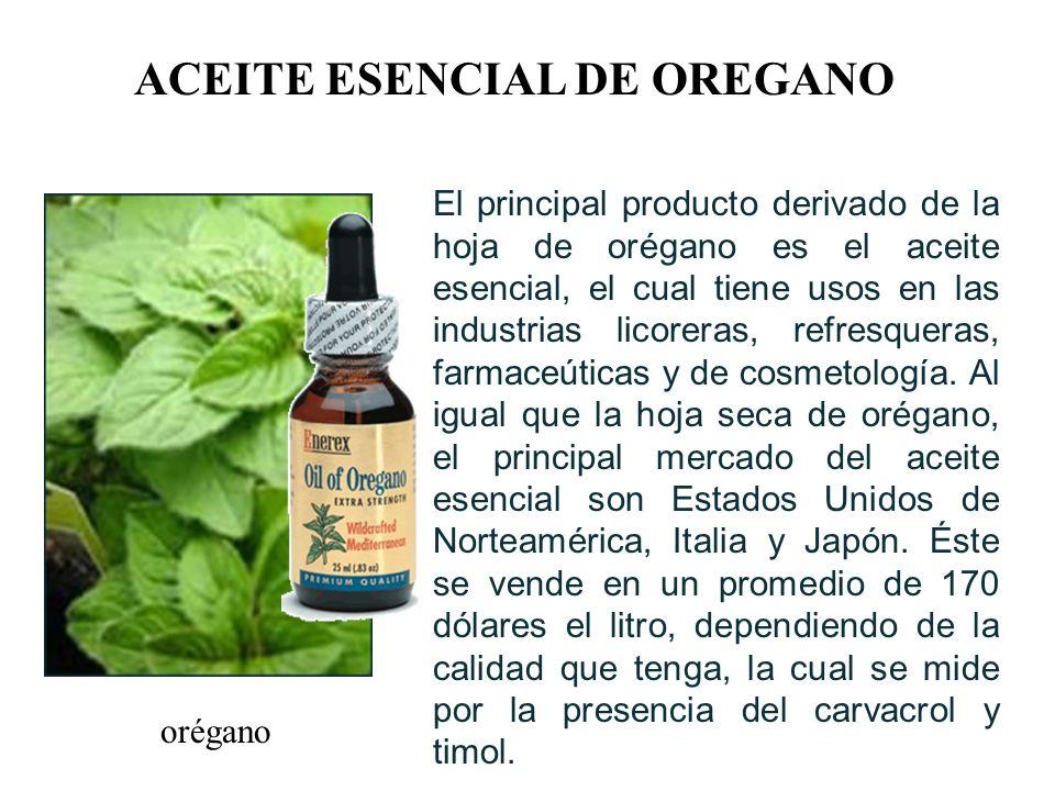 orégano ACEITE ESENCIAL DE OREGANO El principal producto derivado de la hoja de orégano es el aceite esencial, el cual tiene usos en las industrias licoreras, refresqueras, farmaceúticas y de cosmetología.