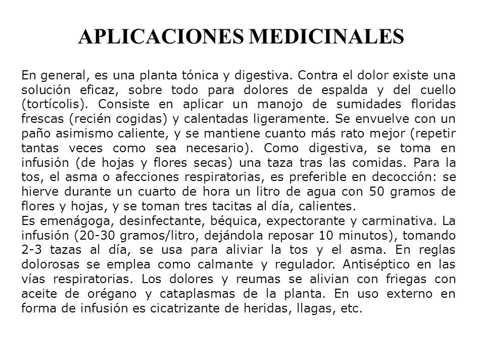 APLICACIONES MEDICINALES En general, es una planta tónica y digestiva.