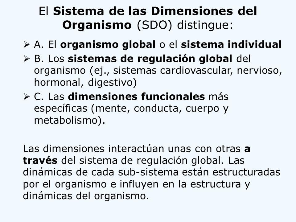 El Sistema de las Dimensiones del Organismo (SDO) distingue: A. El organismo global o el sistema individual B. Los sistemas de regulación global del o