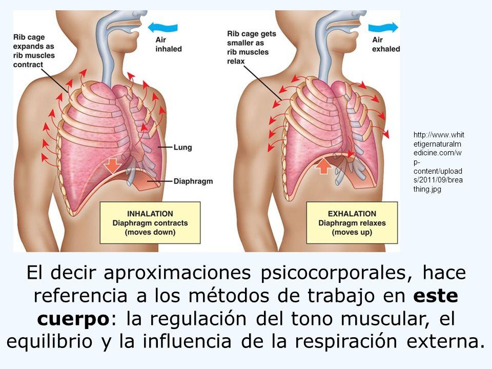 El decir aproximaciones psicocorporales, hace referencia a los métodos de trabajo en este cuerpo: la regulación del tono muscular, el equilibrio y la