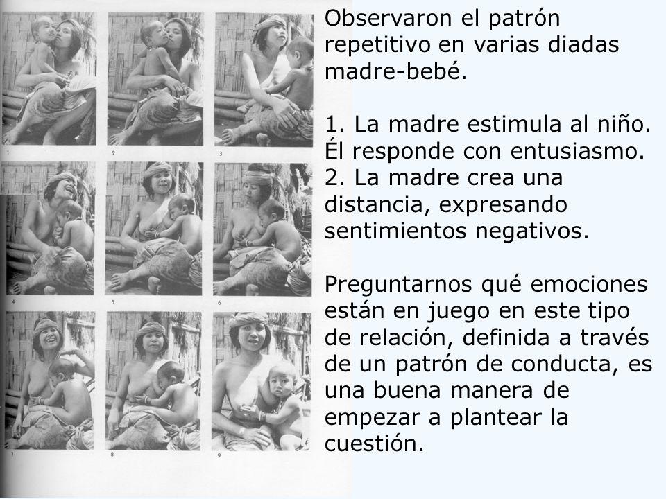 Observaron el patrón repetitivo en varias diadas madre-bebé. 1. La madre estimula al niño. Él responde con entusiasmo. 2. La madre crea una distancia,