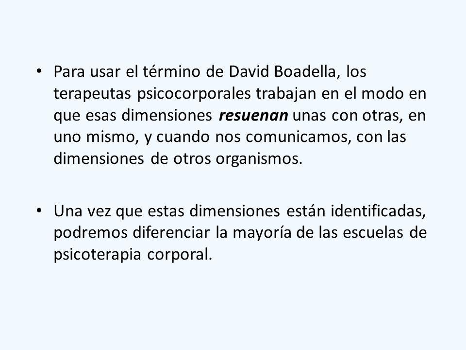 Para usar el término de David Boadella, los terapeutas psicocorporales trabajan en el modo en que esas dimensiones resuenan unas con otras, en uno mis