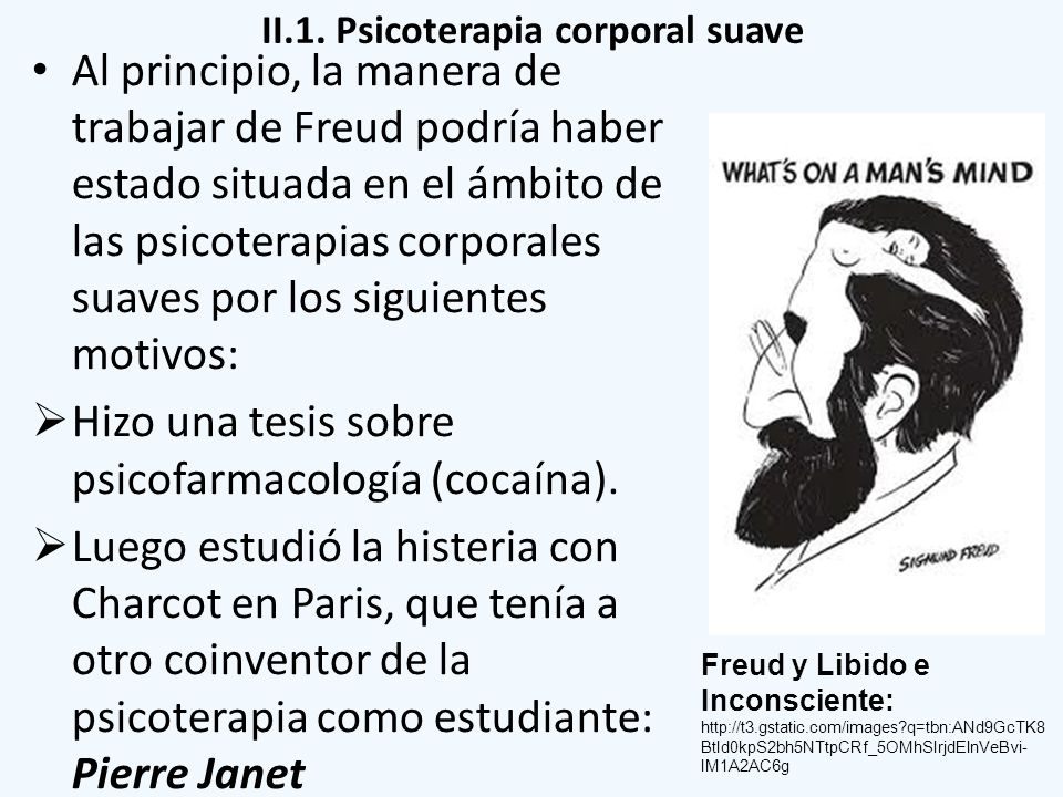 II.1. Psicoterapia corporal suave Al principio, la manera de trabajar de Freud podría haber estado situada en el ámbito de las psicoterapias corporale