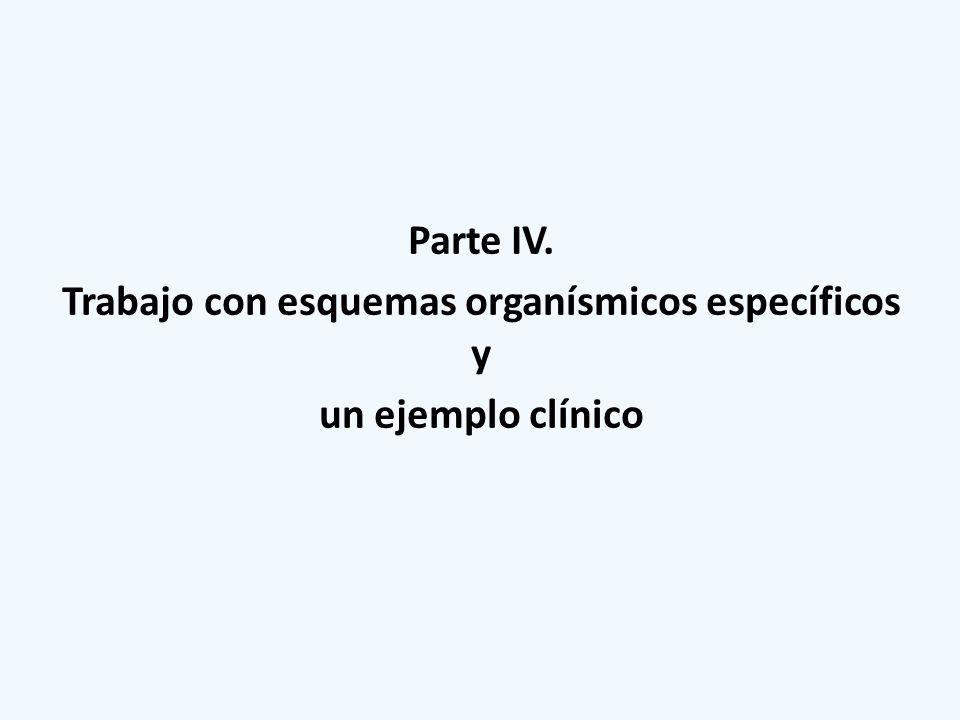 Parte IV. Trabajo con esquemas organísmicos específicos y un ejemplo clínico
