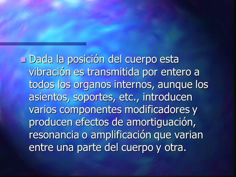 Dada la posición del cuerpo esta vibración es transmitida por entero a todos los organos internos, aunque los asientos, soportes, etc., introducen var