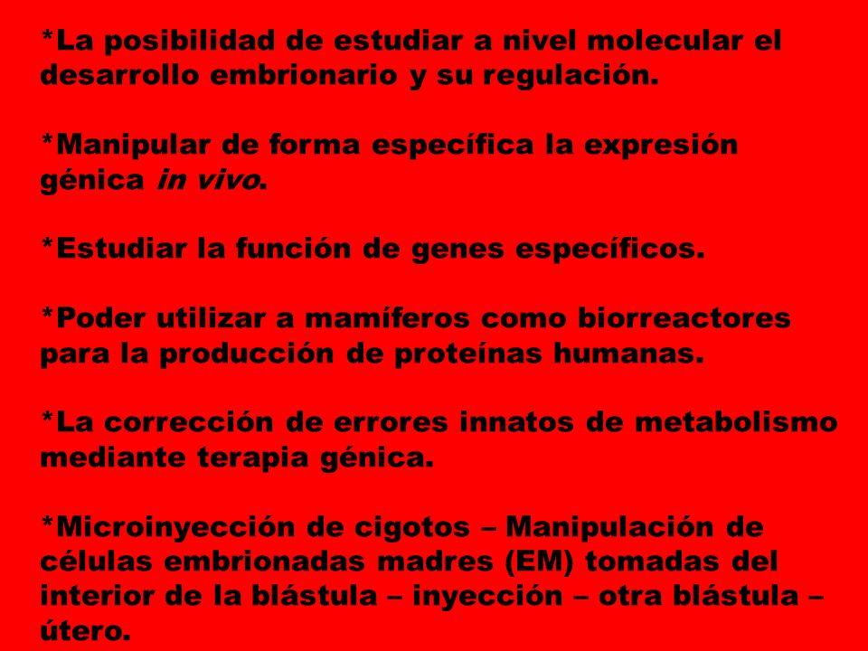 *La posibilidad de estudiar a nivel molecular el desarrollo embrionario y su regulación. *Manipular de forma específica la expresión génica in vivo. *