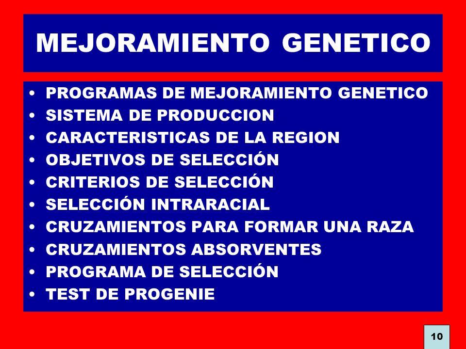 MEJORAMIENTO GENETICO PROGRAMAS DE MEJORAMIENTO GENETICO SISTEMA DE PRODUCCION CARACTERISTICAS DE LA REGION OBJETIVOS DE SELECCIÓN CRITERIOS DE SELECC