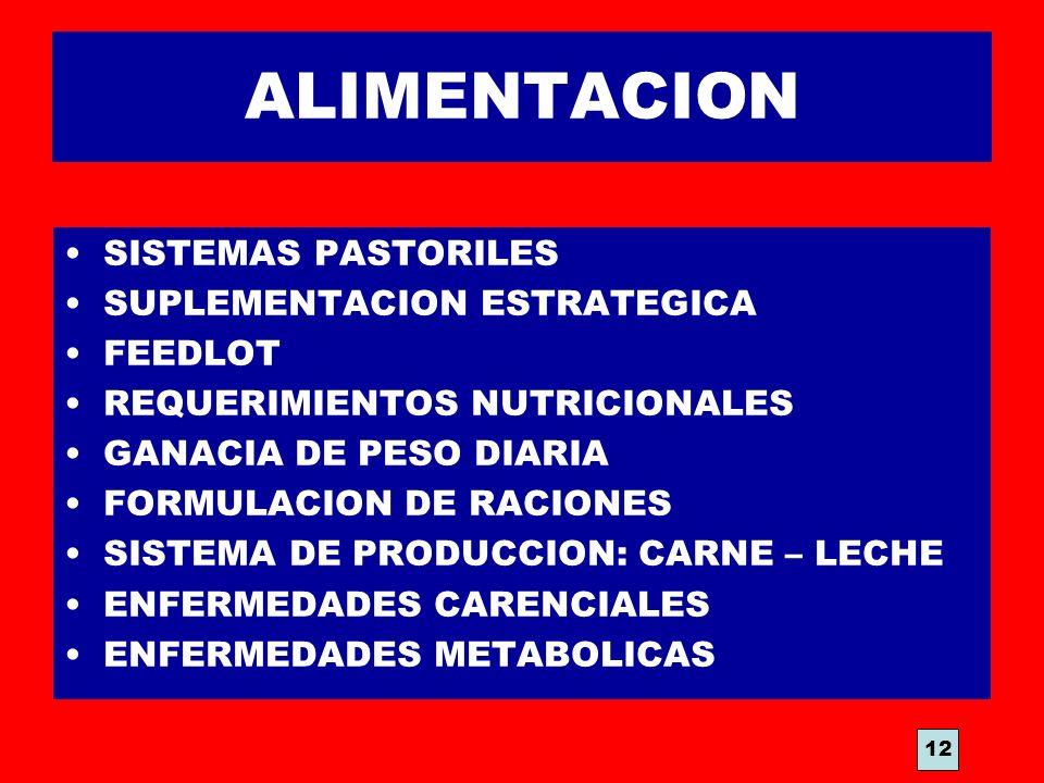 ALIMENTACION SISTEMAS PASTORILES SUPLEMENTACION ESTRATEGICA FEEDLOT REQUERIMIENTOS NUTRICIONALES GANACIA DE PESO DIARIA FORMULACION DE RACIONES SISTEM