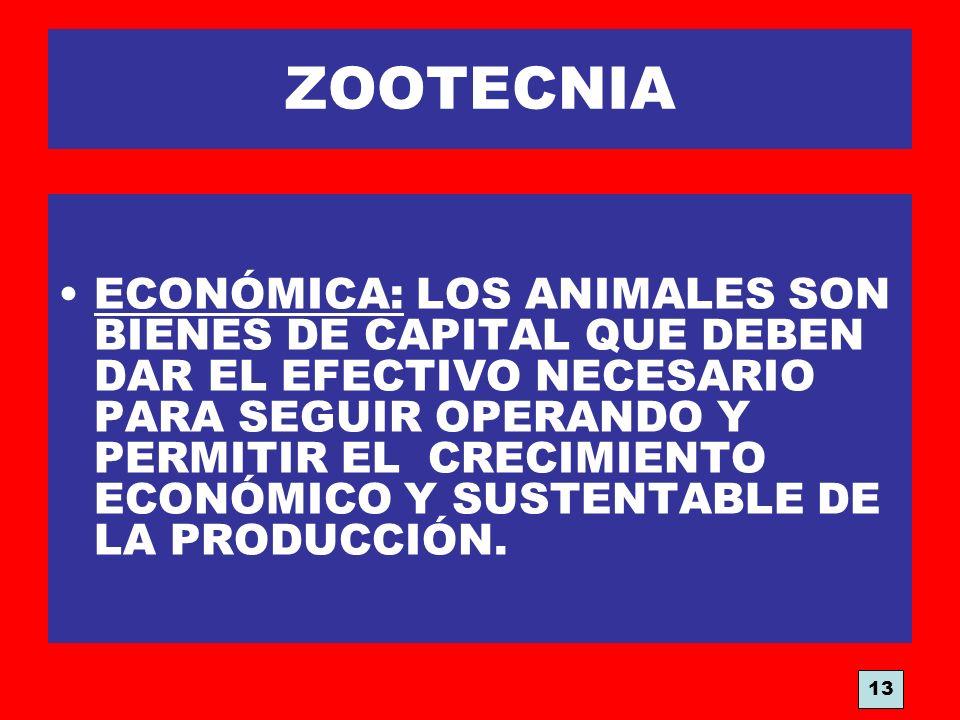 ZOOTECNIA ECONÓMICA: LOS ANIMALES SON BIENES DE CAPITAL QUE DEBEN DAR EL EFECTIVO NECESARIO PARA SEGUIR OPERANDO Y PERMITIR EL CRECIMIENTO ECONÓMICO Y