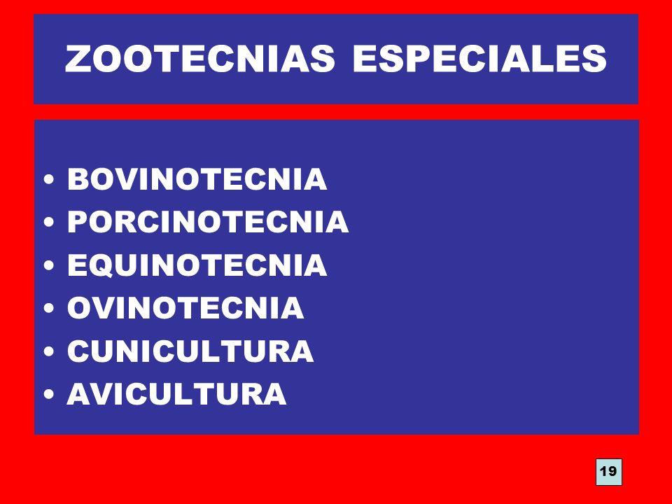 ZOOTECNIAS ESPECIALES BOVINOTECNIA PORCINOTECNIA EQUINOTECNIA OVINOTECNIA CUNICULTURA AVICULTURA 19