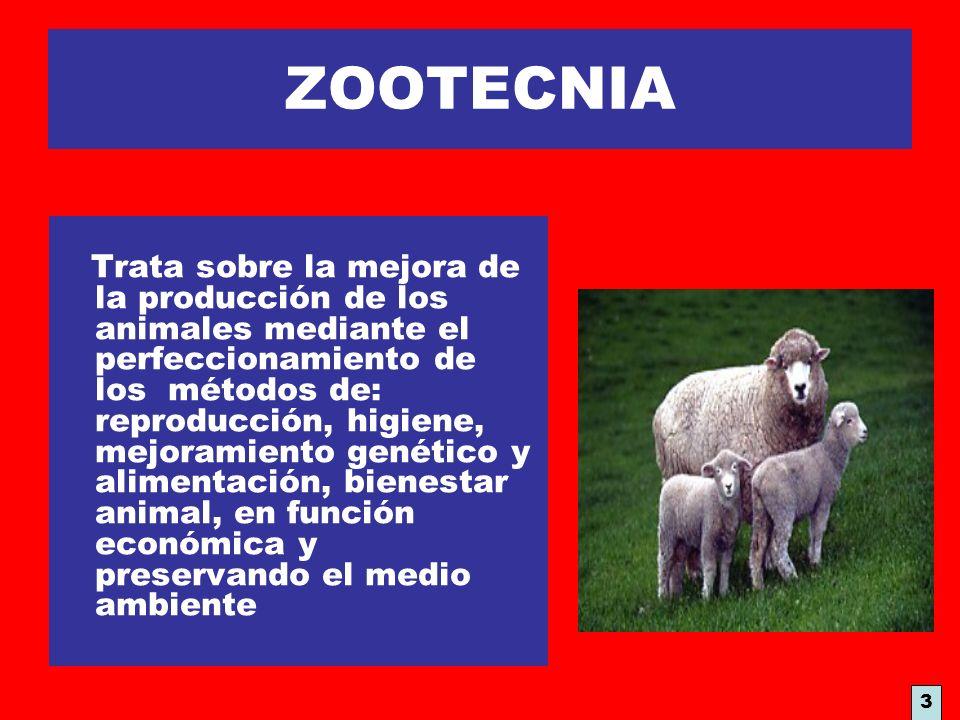 ZOOTECNIA Trata sobre la mejora de la producción de los animales mediante el perfeccionamiento de los métodos de: reproducción, higiene, mejoramiento