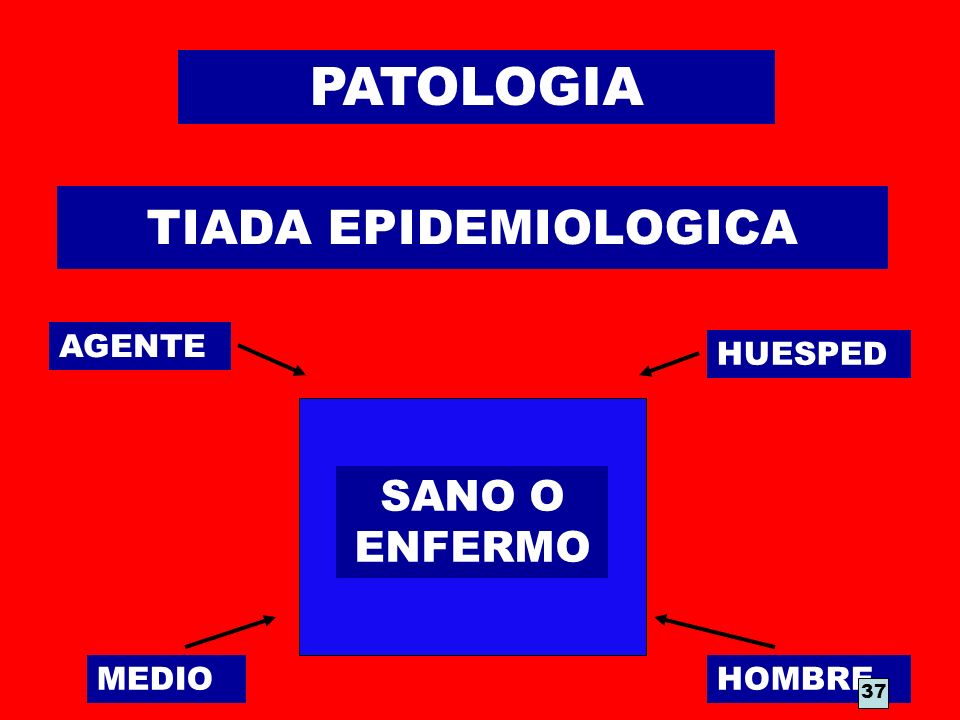 TIADA EPIDEMIOLOGICA AGENTE HUESPED MEDIOHOMBRE SANO O ENFERMO 37 PATOLOGIA