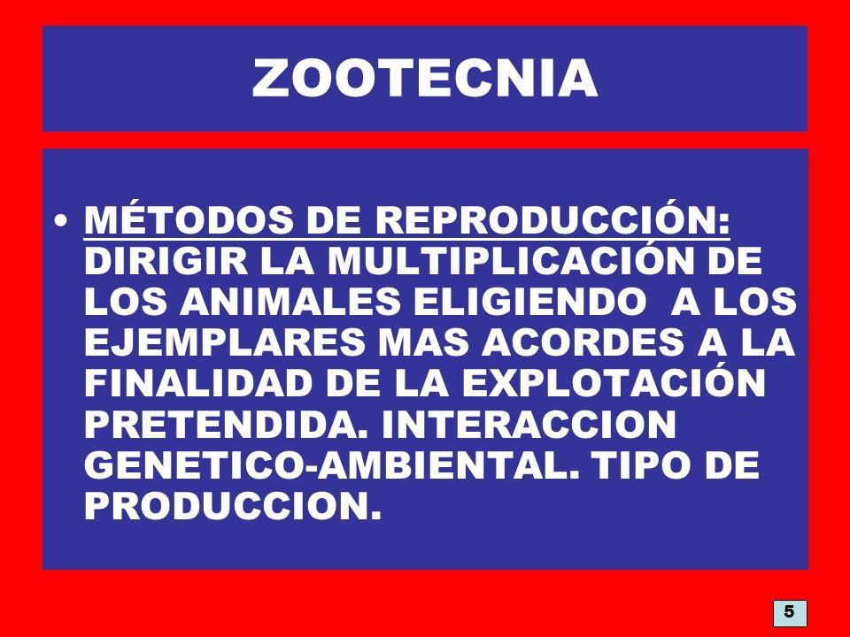 ZOOTECNIA MÉTODOS DE REPRODUCCIÓN: DIRIGIR LA MULTIPLICACIÓN DE LOS ANIMALES ELIGIENDO A LOS EJEMPLARES MAS ACORDES A LA FINALIDAD DE LA EXPLOTACIÓN P