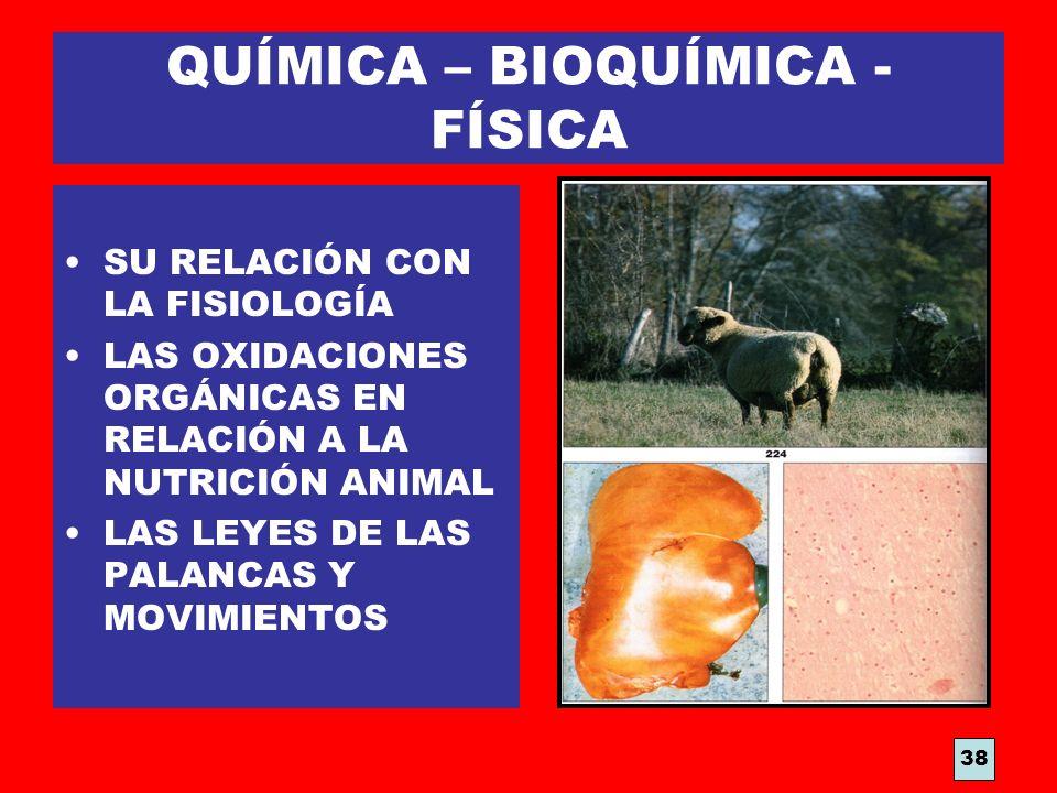 QUÍMICA – BIOQUÍMICA - FÍSICA SU RELACIÓN CON LA FISIOLOGÍA LAS OXIDACIONES ORGÁNICAS EN RELACIÓN A LA NUTRICIÓN ANIMAL LAS LEYES DE LAS PALANCAS Y MO