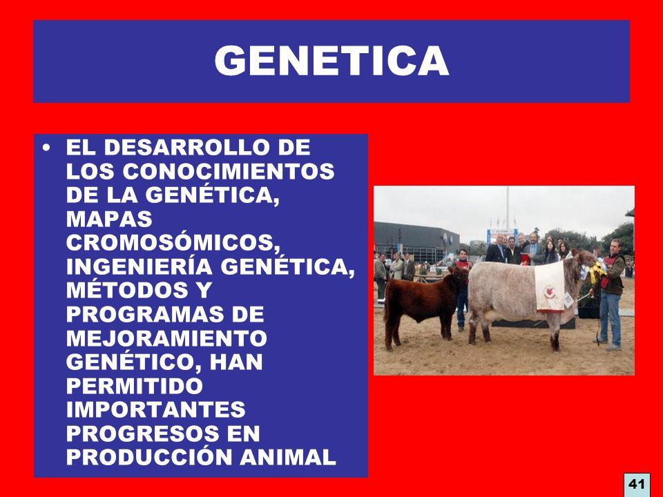 GENETICA EL DESARROLLO DE LOS CONOCIMIENTOS DE LA GENÉTICA, MAPAS CROMOSÓMICOS, INGENIERÍA GENÉTICA, MÉTODOS Y PROGRAMAS DE MEJORAMIENTO GENÉTICO, HAN