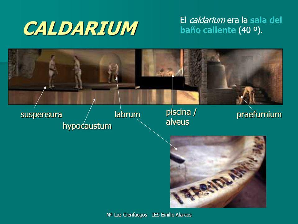 CALDARIUM hypocaustum El caldarium era la sala del baño caliente (40 º). labrum piscina / alveus praefurniumsuspensura Mª Luz Cienfuegos IES Emilio Al