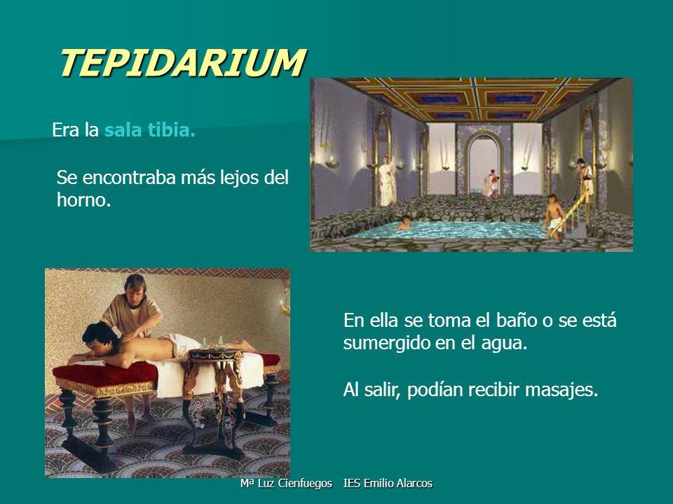 TEPIDARIUM Era la sala tibia. Se encontraba más lejos del horno. En ella se toma el baño o se está sumergido en el agua. Al salir, podían recibir masa