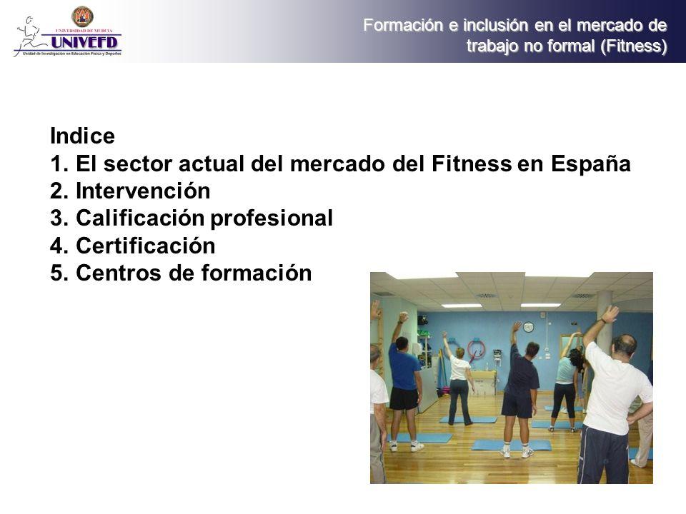 Formación e inclusión en el mercado de trabajo no formal (Fitness) Certificación Universidades publicas Universidades privadas Organismos privados de formación Organos inspectores de ejercicio profesional 4.