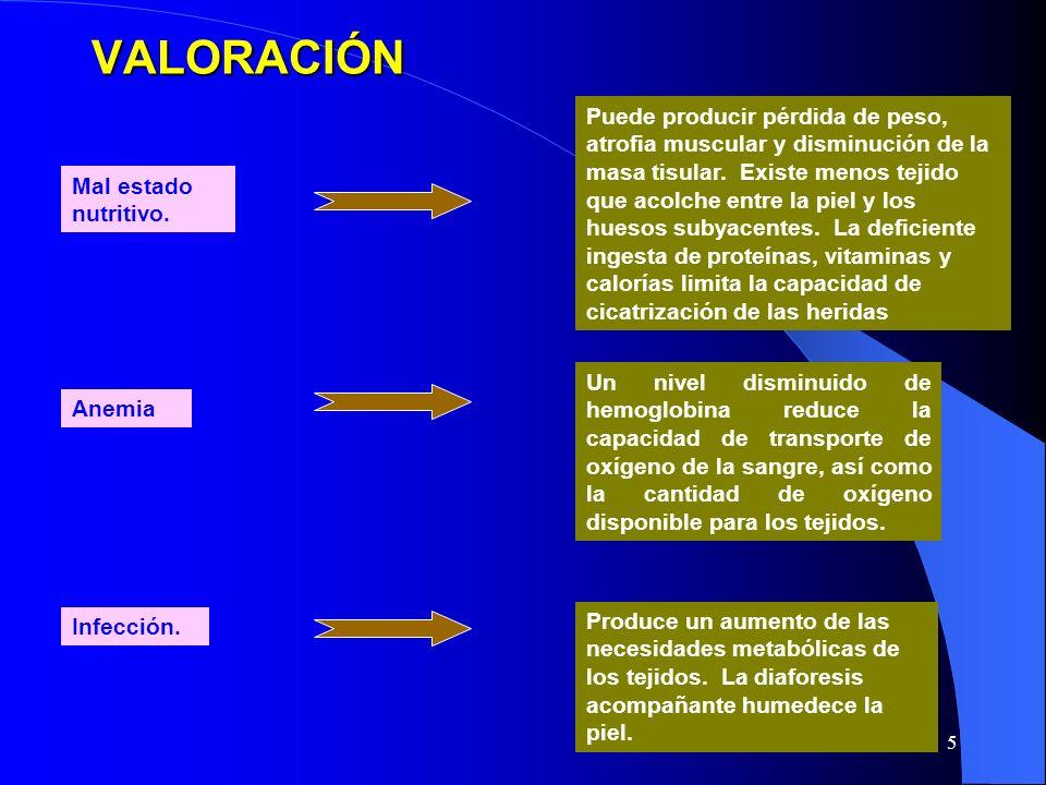 5 Produce un aumento de las necesidades metabólicas de los tejidos.