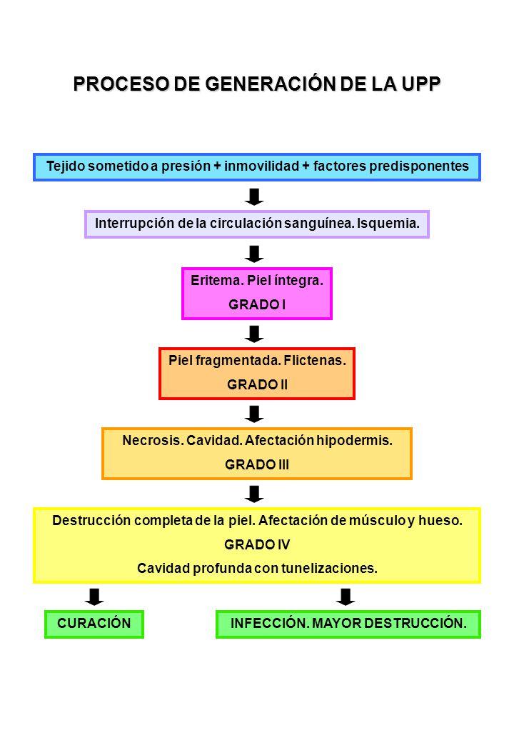 PROCESO DE GENERACIÓN DE LA UPP Tejido sometido a presión + inmovilidad + factores predisponentes Interrupción de la circulación sanguínea.