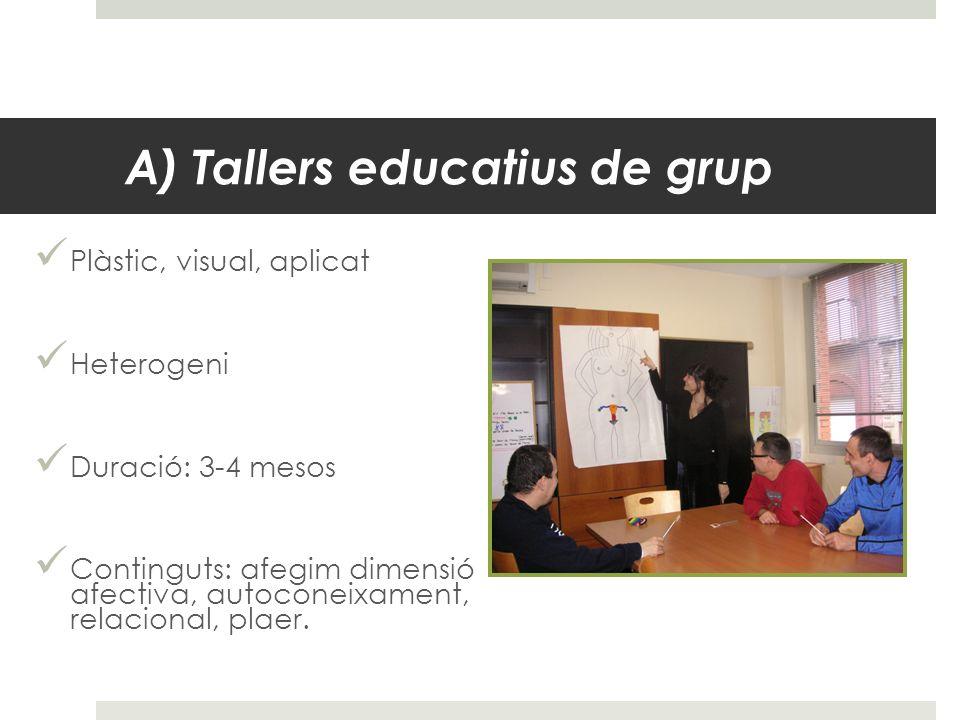 A) Tallers educatius de grup Plàstic, visual, aplicat Heterogeni Duració: 3-4 mesos Continguts: afegim dimensió afectiva, autoconeixament, relacional,