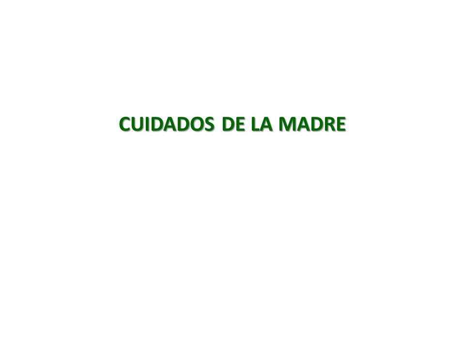 CUIDADOS DE LA MADRE