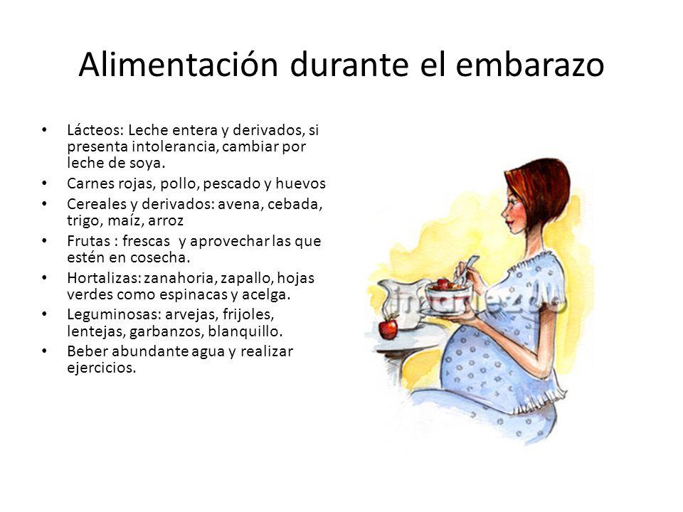 Alimentación durante el embarazo Lácteos: Leche entera y derivados, si presenta intolerancia, cambiar por leche de soya. Carnes rojas, pollo, pescado
