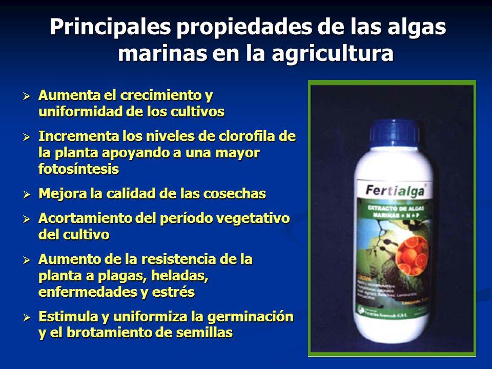 Aumenta el crecimiento y uniformidad de los cultivos Aumenta el crecimiento y uniformidad de los cultivos Incrementa los niveles de clorofila de la pl