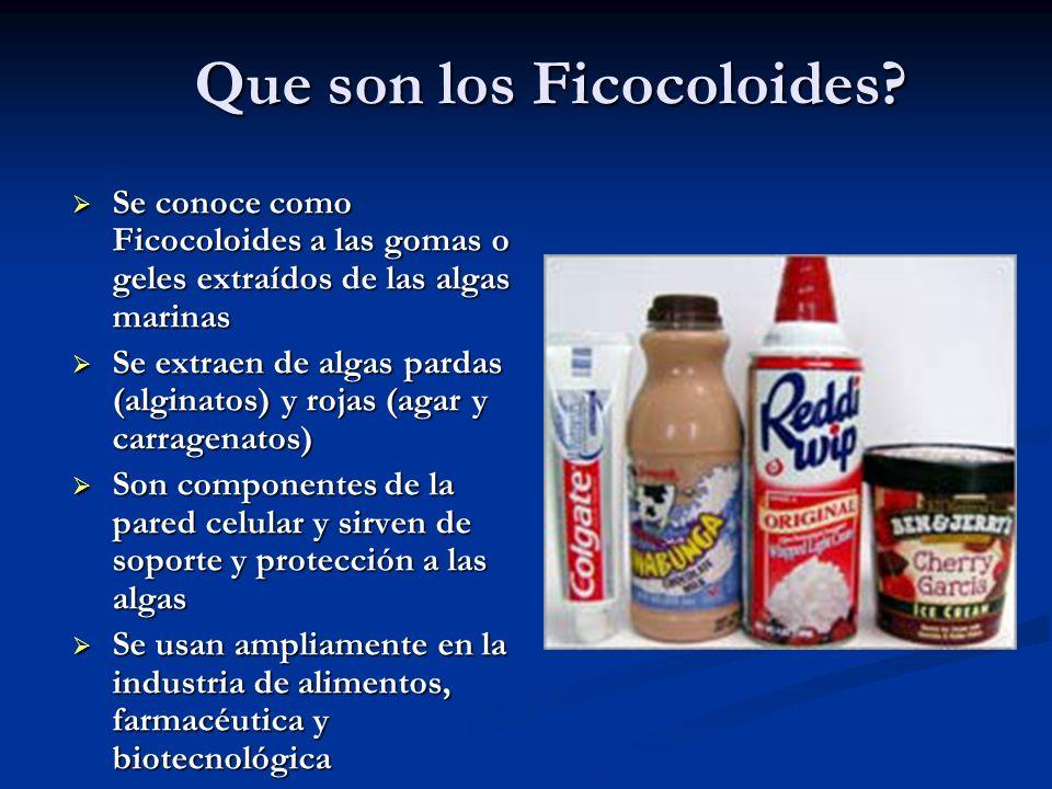 Que son los Ficocoloides? Se conoce como Ficocoloides a las gomas o geles extraídos de las algas marinas Se conoce como Ficocoloides a las gomas o gel