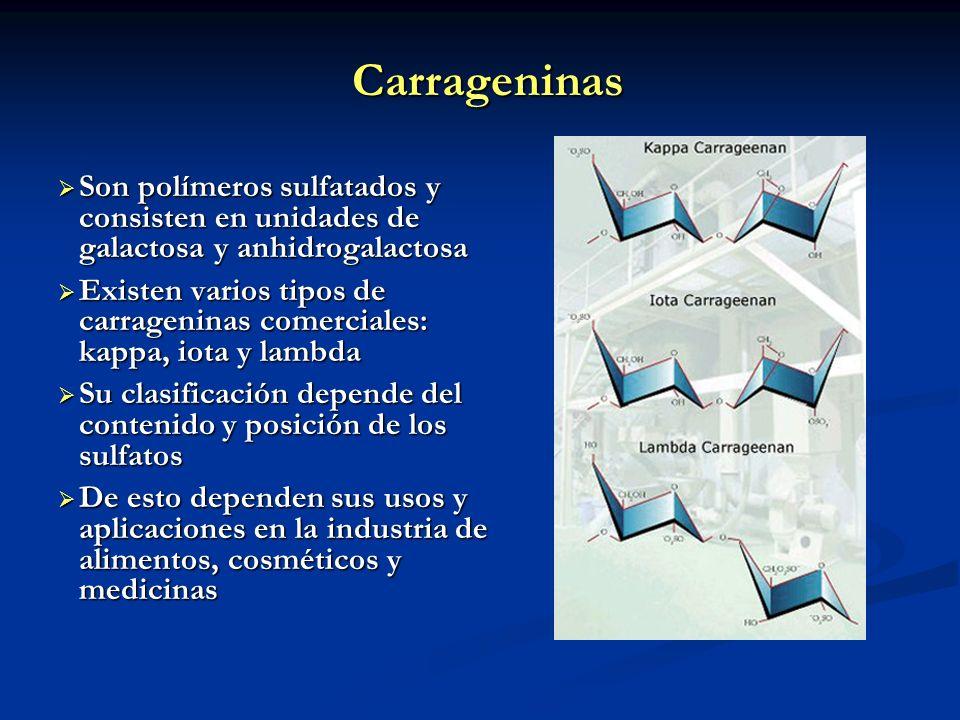 Carrageninas Son polímeros sulfatados y consisten en unidades de galactosa y anhidrogalactosa Son polímeros sulfatados y consisten en unidades de gala