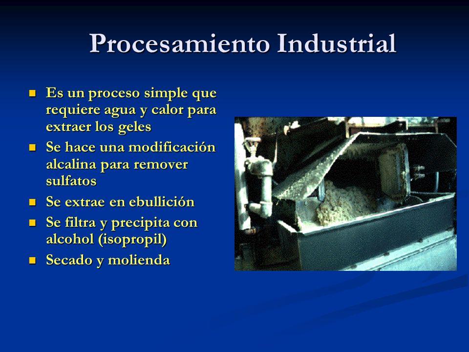Procesamiento Industrial Es un proceso simple que requiere agua y calor para extraer los geles Es un proceso simple que requiere agua y calor para ext