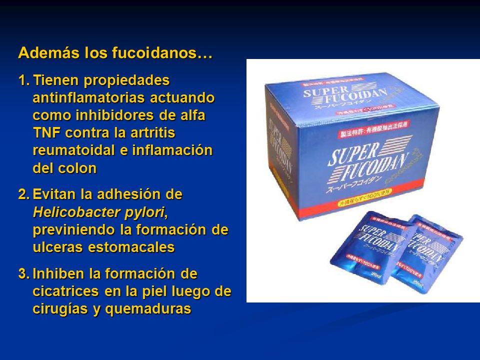 Además los fucoidanos… 1.Tienen propiedades antinflamatorias actuando como inhibidores de alfa TNF contra la artritis reumatoidal e inflamación del co