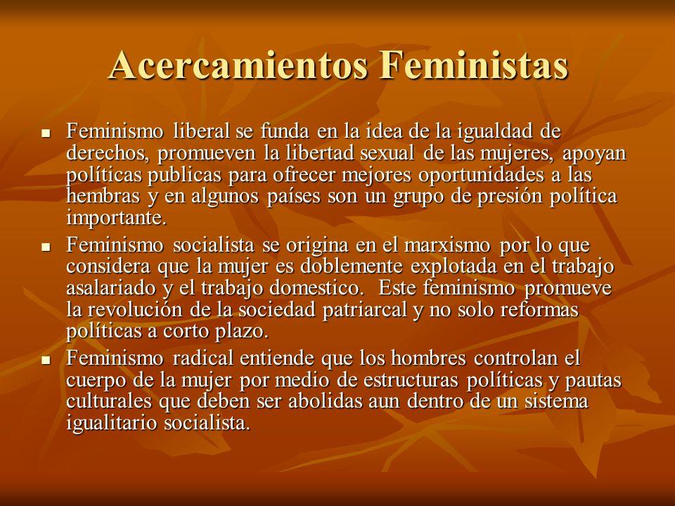 Acercamientos Feministas Feminismo liberal se funda en la idea de la igualdad de derechos, promueven la libertad sexual de las mujeres, apoyan polític