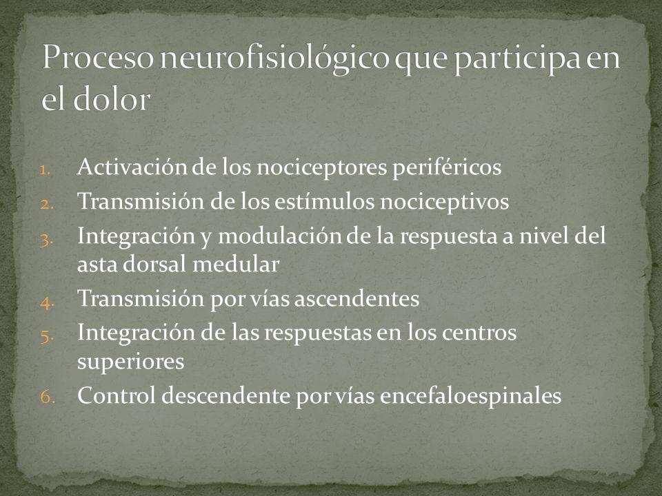 1.Activación de los nociceptores periféricos 2. Transmisión de los estímulos nociceptivos 3.
