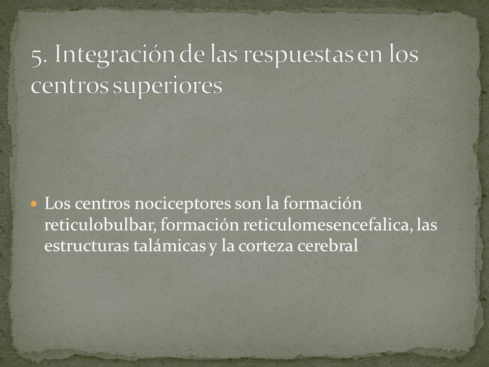 Los centros nociceptores son la formación reticulobulbar, formación reticulomesencefalica, las estructuras talámicas y la corteza cerebral