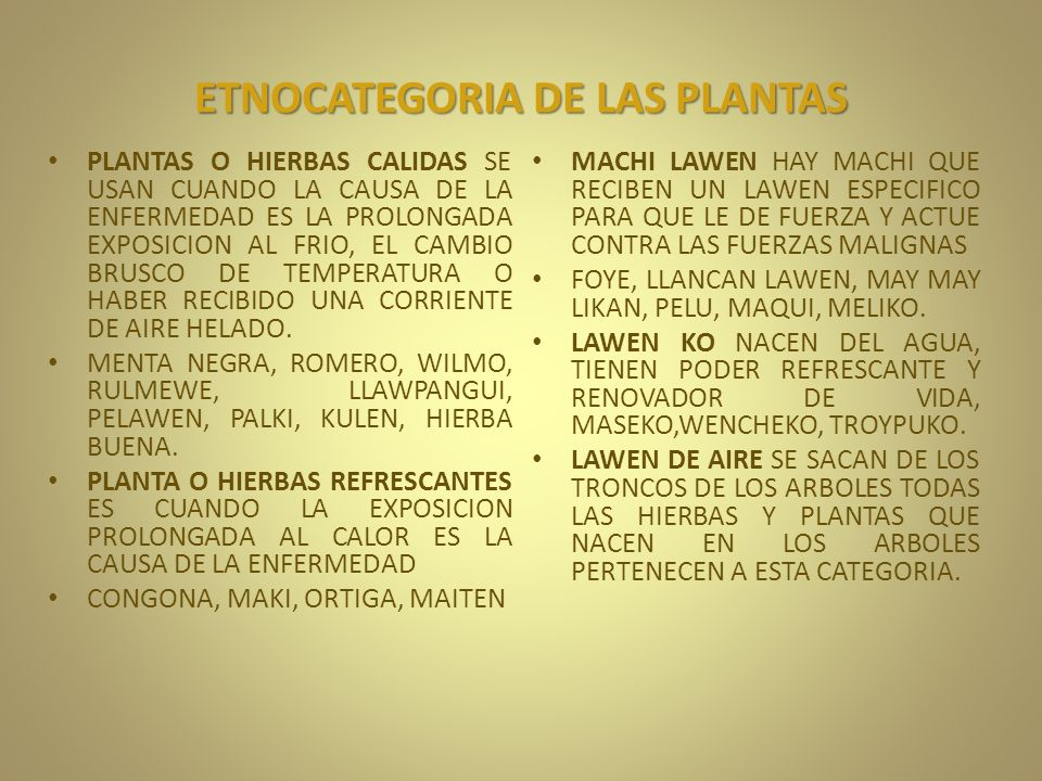 ETNOCATEGORIA DE LAS PLANTAS PLANTAS O HIERBAS CALIDAS SE USAN CUANDO LA CAUSA DE LA ENFERMEDAD ES LA PROLONGADA EXPOSICION AL FRIO, EL CAMBIO BRUSCO