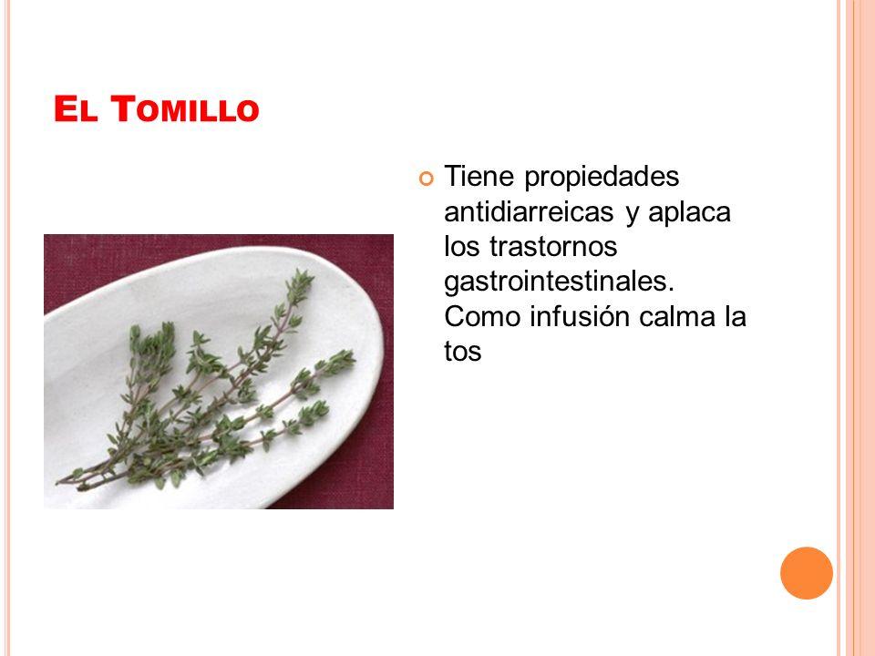E L T OMILLO Tiene propiedades antidiarreicas y aplaca los trastornos gastrointestinales. Como infusión calma la tos