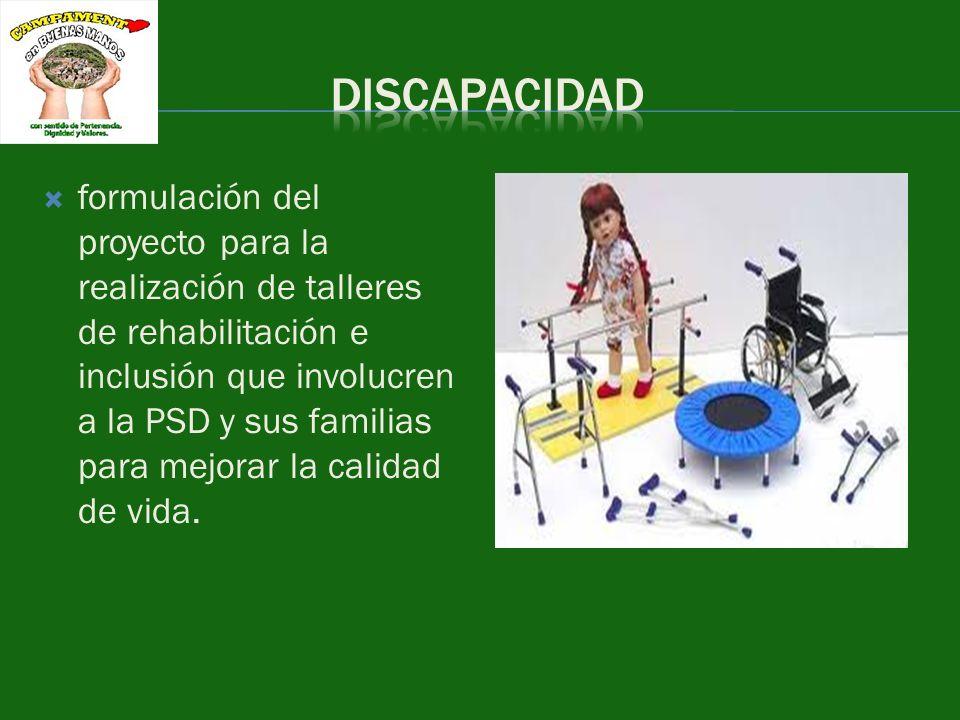 formulación del proyecto para la realización de talleres de rehabilitación e inclusión que involucren a la PSD y sus familias para mejorar la calidad