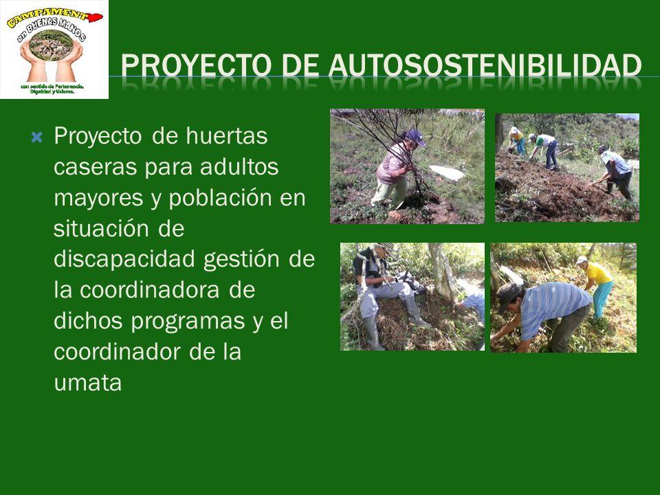 Proyecto de huertas caseras para adultos mayores y población en situación de discapacidad gestión de la coordinadora de dichos programas y el coordina