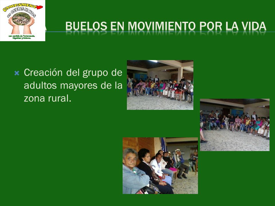 formulación del proyecto para la realización de talleres de rehabilitación e inclusión que involucren a la PSD y sus familias para mejorar la calidad de vida.